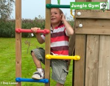 Childs_climbing_frame_1_Step_Ladder_1511