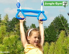 Monkey_bars_Jungle_Gym_1511